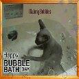 Cat Making Bubbles!
