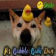 Doggy Taking A Bubble Bath!
