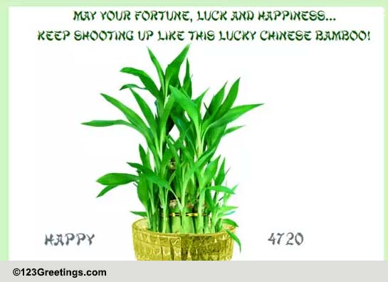 Chinese Good Luck Bamboo Free Good Luck Symbols Amp Fortune