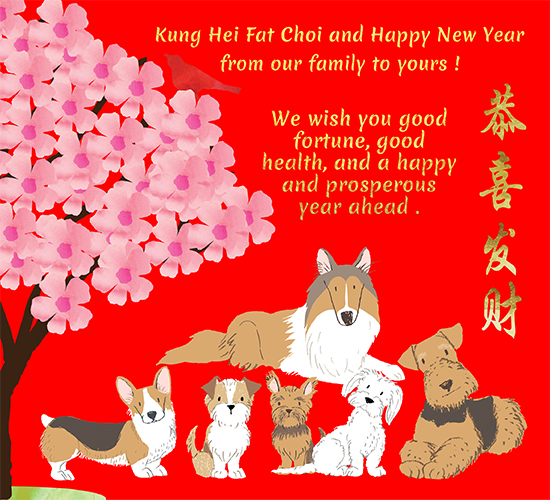 Kung Hei Fat Choi From Our Family.