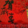 The Chinese Lunar New Year!