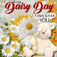 Home : Events : Daisy Day 2020 [Jan 28] - A Daisy Just For You.
