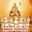 A Divine Festival Of Sun God!