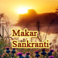 Makar Sankranti Wishes To You!