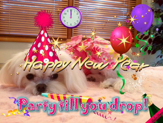 Party Till You Drop!