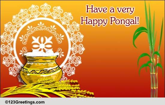 Pongal Cards Free Pongal ECards Greeting Cards