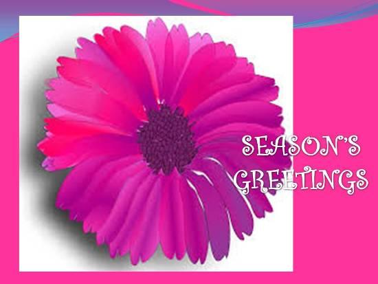 Season Of Happiness...