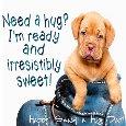 Sweet Puppy Hugs.
