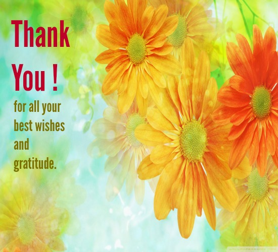 Heartiest thanks for all your wishes free thank you ecards 123 heartiest thanks for all your wishes m4hsunfo