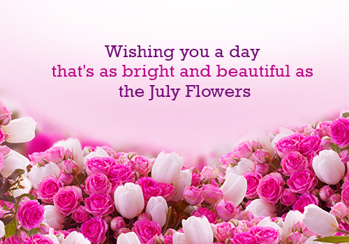 Bright And Beautiful Flowers For U.
