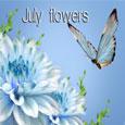 Blossoms Of Joy.