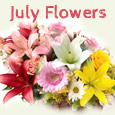 Beautiful July Flowers Just For You...