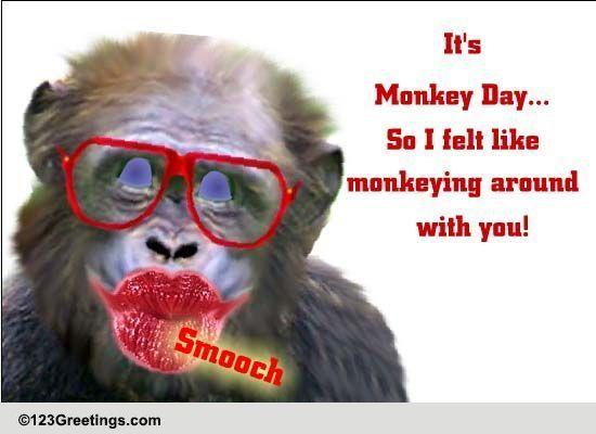 Image Result For Funny Ecards Personal P Os