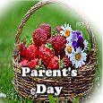 For Wonderful Parents!