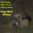 Home : Events : World UFO Day 2018 [Jul 2] - UFO Cats...