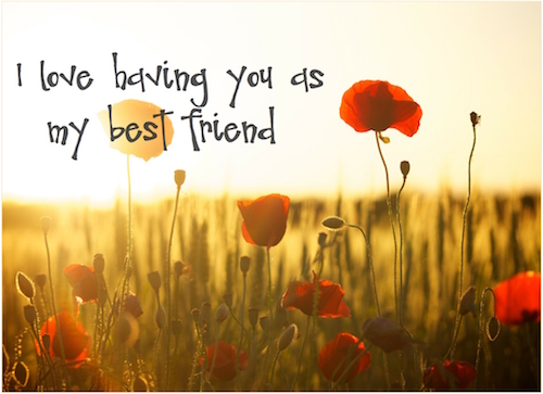 I Love Having You As My Best Friend.