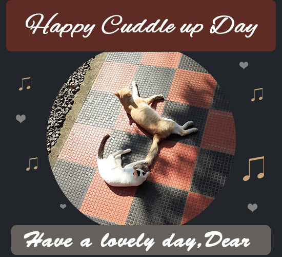 Happy Cuddle Up Day, Cats.