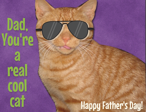 Dads a cool cat free fun ecards greeting cards 123 greetings dads a cool cat sciox Gallery