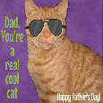 Dad's A Cool Cat.
