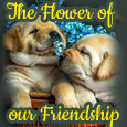 The Flower Of Our Friendship...