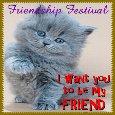 My Friendship Card.