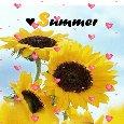Sunny Summer!