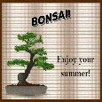 Enjoy Summer With This Bonsai Tree.