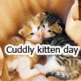 Cute Cuddle For You Dear.