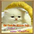 A Cute Cuddly Kitten Day Card.