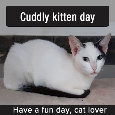 Cuddly Kitten Day, March 23.