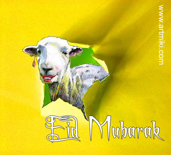 Eid Mubarak, From A Sheep.