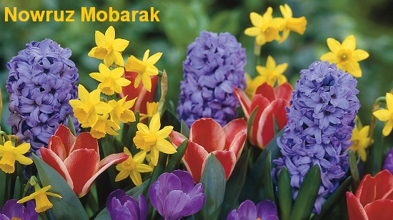 Happy Nowruz With Spring Flowers.