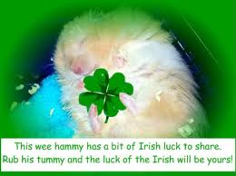 Hugs For You On Saint Patrick's Day.