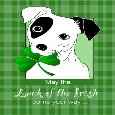 Cute Terrier Dog St. Patrick's Day.
