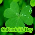 Greenest St. Patrick's Day.