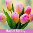 Charming Spring!