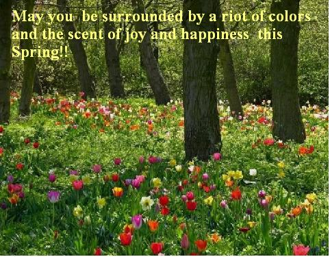 Colours Of Happiness And Joy!!