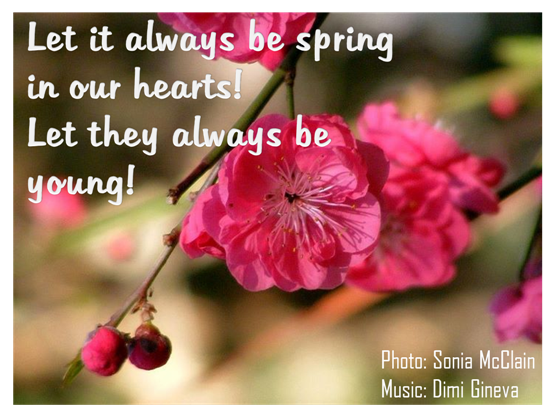 Feel The Spring Magic In Your Heart.