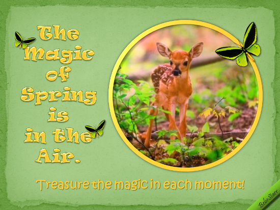 Treasure The Magic In Each Moment.