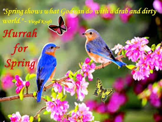 splendour of spring  free magic of spring ecards  greeting