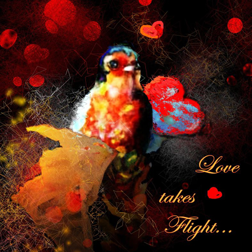 Love Takes Flight.