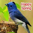 I Love Spring...