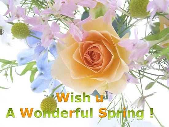 Wishes For A  Wonderful Spring.