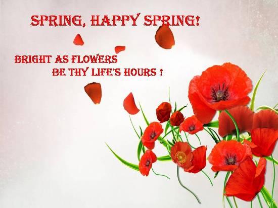 Happy Happy Spring...