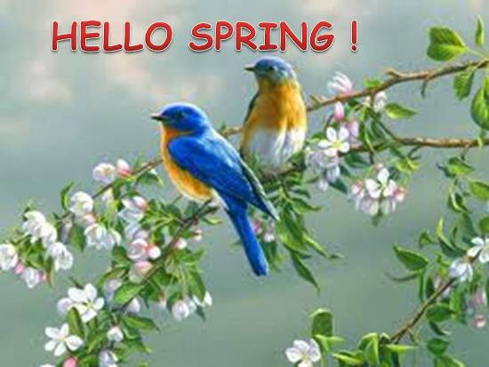 A Warm Welcome To Spring.