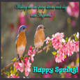 Spring Wish...