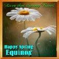 A Spring Equinox Card.