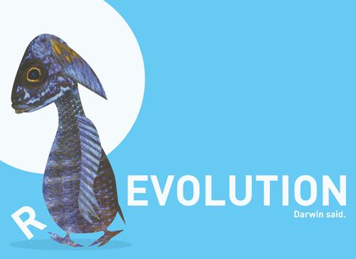 Celebrating Darwin.
