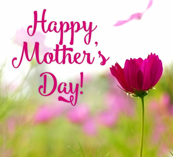 Send A Lovely Spring Flower To Mom. Free Happy Mother's ...
