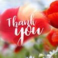 Thanks Dear!